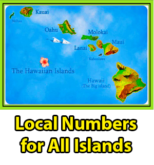 hawaii bail bonds for all islands